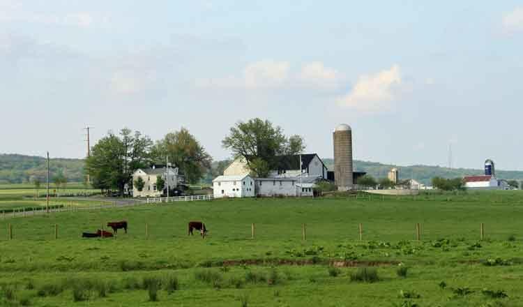 PA Farm Stay