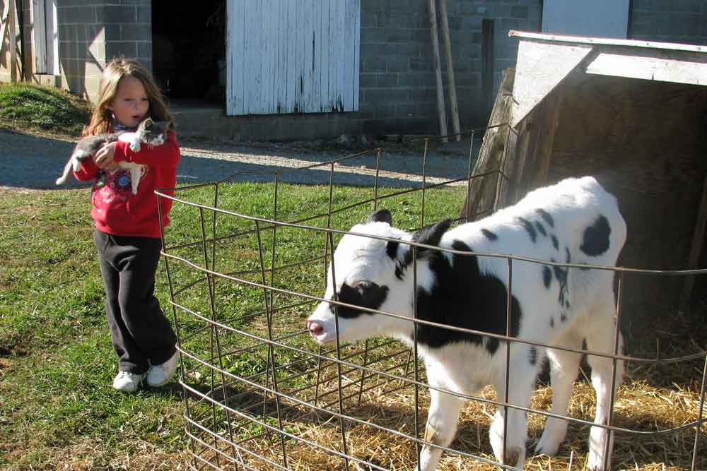 family friendly farm stay Lancaster County PA